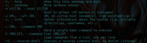 ShellShock.py - A python script to attack a host with a shellshock vulnerability.