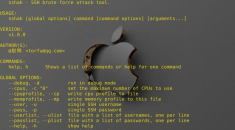 sshak - SSH brute force attack tool.