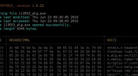ByteForce - Offline Digital Forensics Tool for Binary Files.