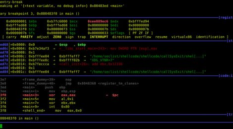 shellcode for execve penetration test.