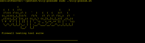 Wily Possum - A firewall penetration testing tool suite.