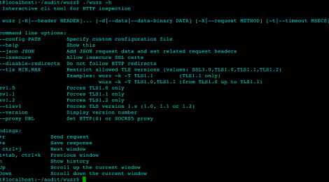 wuzz - Interactive cli tool for HTTP inspection.