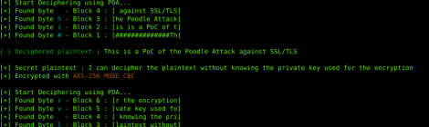 PoC of the Poodle Attack against SSL/TLS
